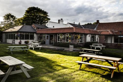 Beer Gardens in North East